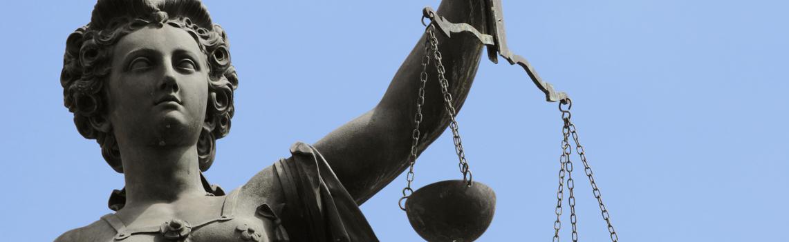 Legislation Expertise